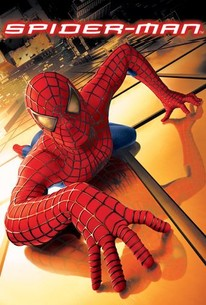Poster for Spider-Man (2002)